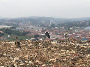 Marabu Landfill Kiteezi Kampala Uganda