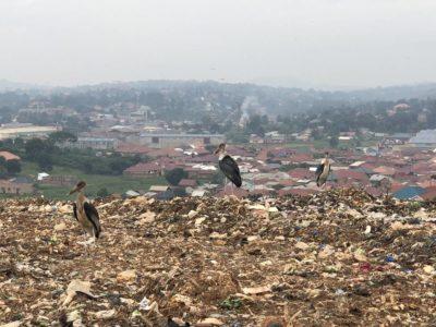 Marabu Mülldeponie Kiteezi Kampala Uganda