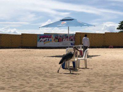 Marabu am Strand in Entebbe - Spennah Beach in Uganda