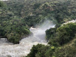 Wasserfall Murchison Falls National Park