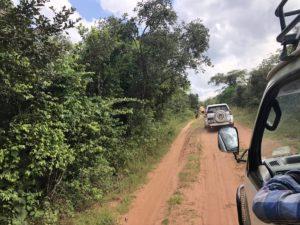 Unterwegs im Ziwa Rhino Sanctuary